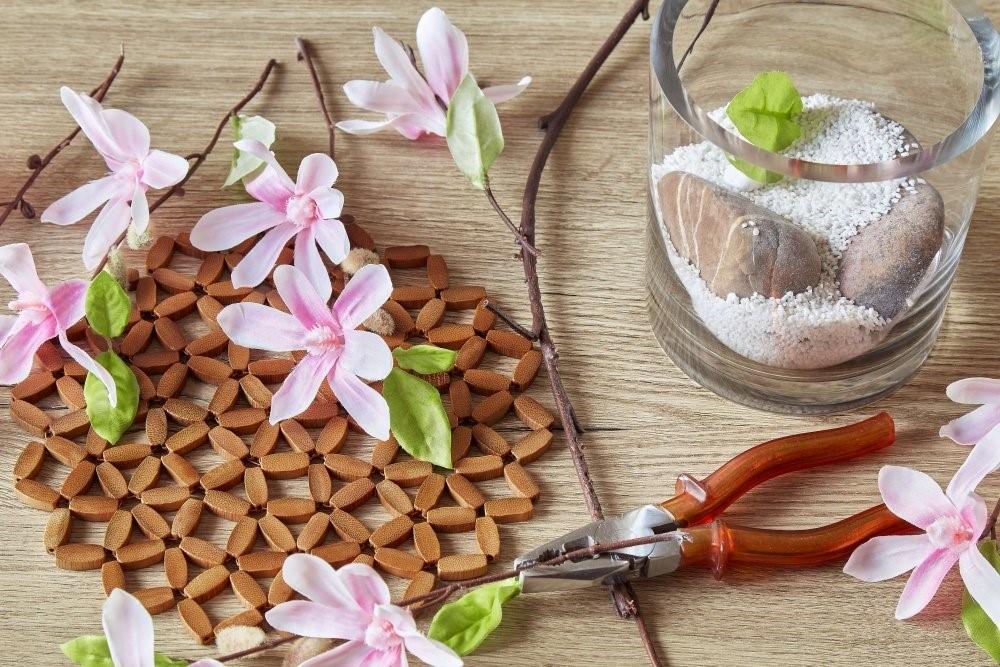 Magnolii 4